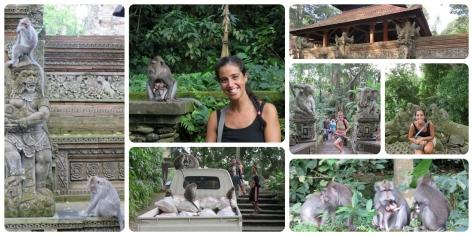 Monkey Forrest ... notese como los monos se tomaron una camioneta!!