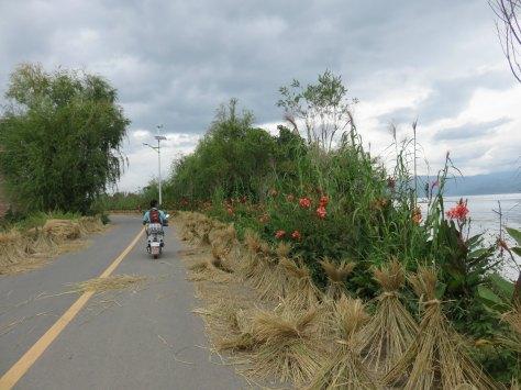 Mas paisaje en la orilla del lago.